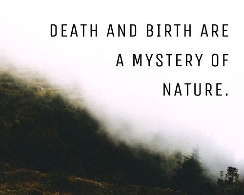 marcus aurelius quotes on death