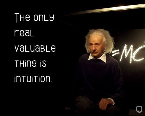 Albert Einstein Quotes About Learning