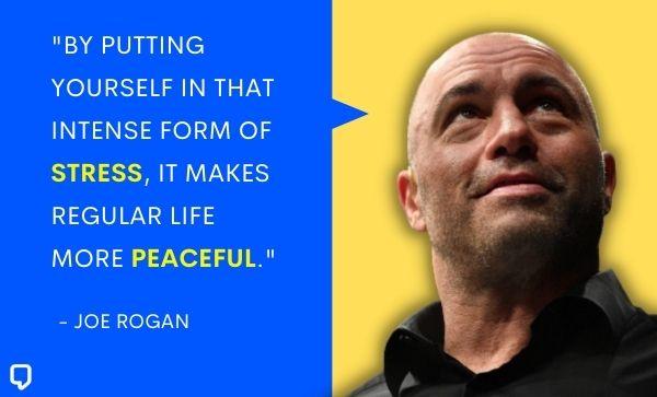joe rogan quotes on life