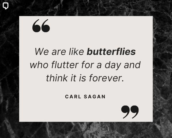 carl sagan quotes